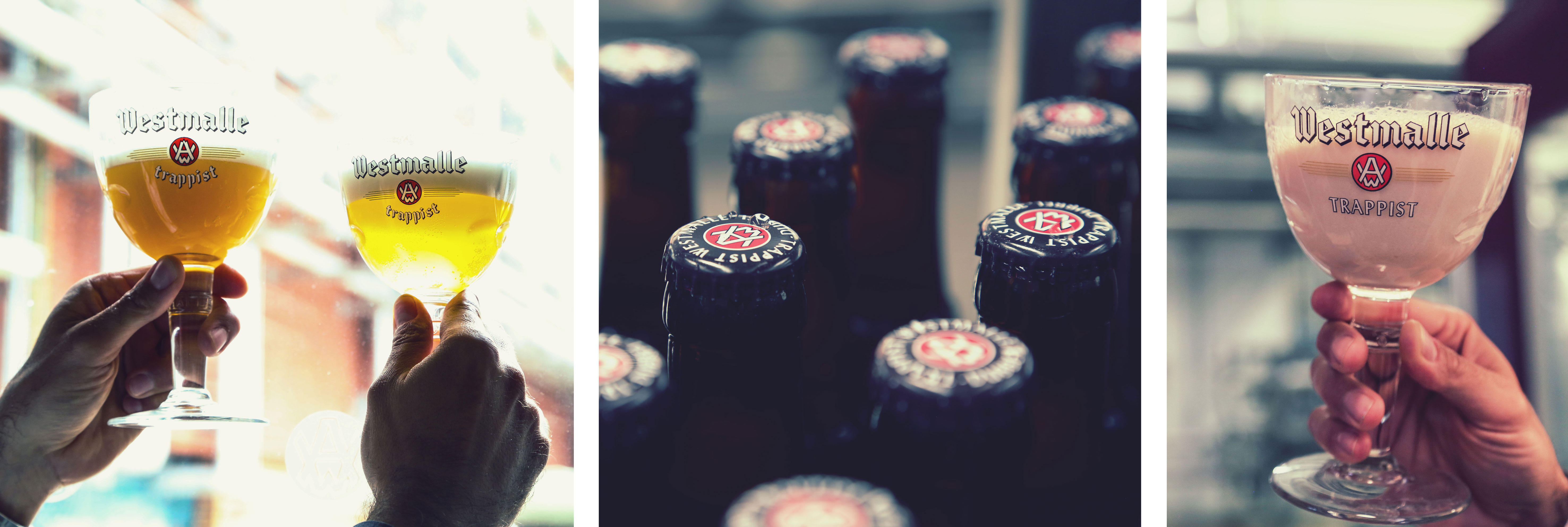 Westmalle-beer-and-yeast-collage